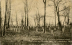2-62 Johnsons Island Cemetery