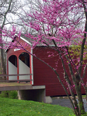 1-68 Otway Covered Bridge 1